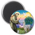 St Francis and Llama Baby Magnet