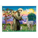 St Francis and Llama Baby Postcards