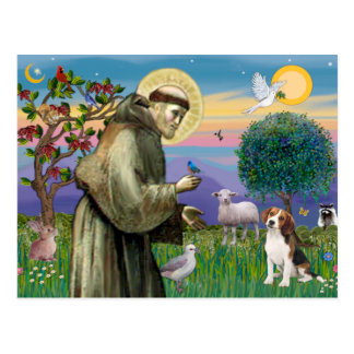 St Francis - beagle 1 Postales