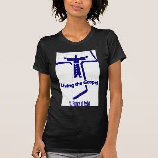 St Francis de Assisi Camisas