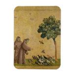 St Francis de Assisi que predica a los pájaros Imanes De Vinilo