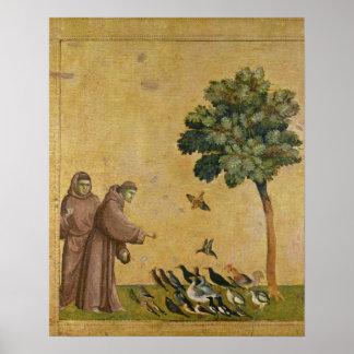 St Francis de Assisi que predica a los pájaros Póster