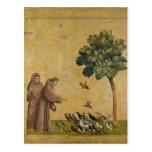 St Francis de Assisi que predica a los pájaros Tarjetas Postales
