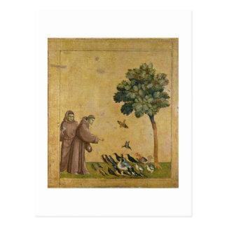 St Francis de Assisi que predica a los pájaros Postal