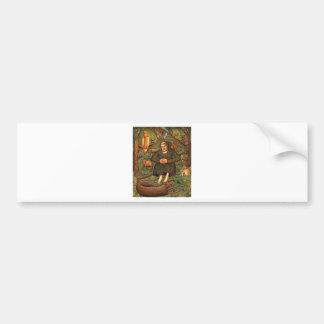 St Francis en el regalo del bosque taza del llave Etiqueta De Parachoque