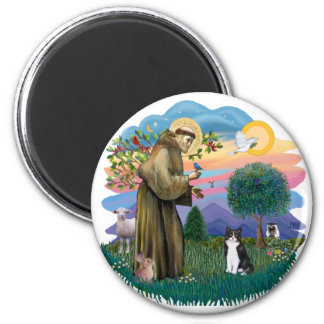 St Francis (ff) - Black and white cat Magnet