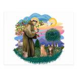 St Francis (ff) - dos gatos de Tabby Tarjetas Postales