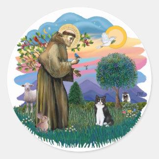 St Francis (ff) - gato blanco y negro Pegatina Redonda