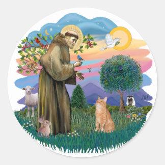 St Francis (ff) - gato de Tabby anaranjado Pegatina Redonda