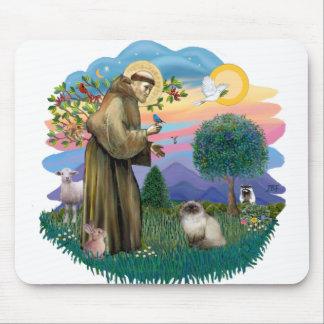 St Francis (ff) - gato Himalayan del punto del sel Tapete De Raton