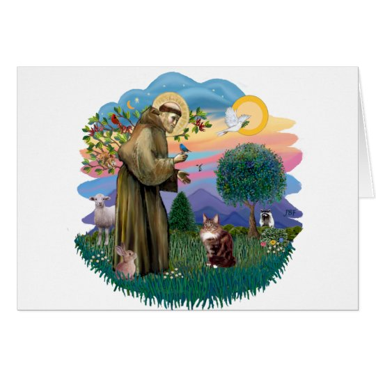 St Francis (ff) - Maine Coon cat  (brown tabby) Card