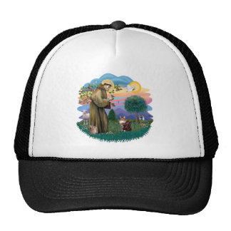 St Francis (ff) - Maine Coon cat  (brown tabby) Trucker Hat