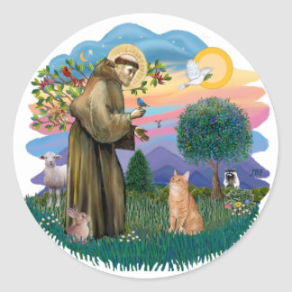 St Francis (ff) - Orange Tabby cat Classic Round Sticker