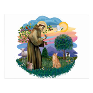 St Francis (ff) - Orange Tabby cat Postcard