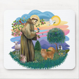 St Francis (ff) - Red Persian cat Mouse Pad