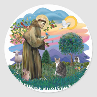 St Francis (ff) - Tabby and white cat Classic Round Sticker