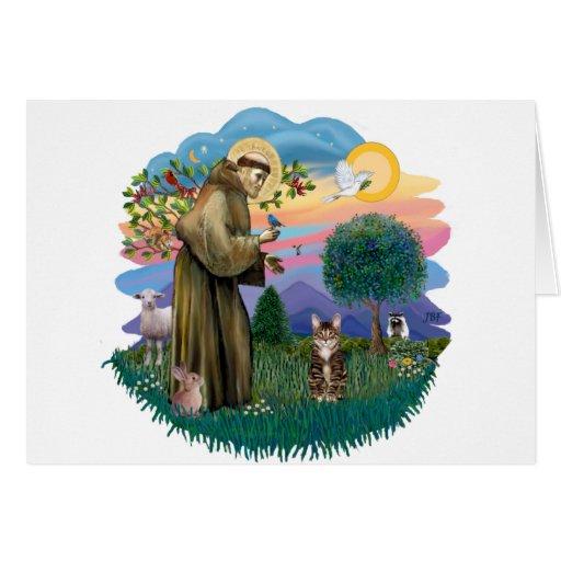 St francis (ff) - Tabby Tiger cat Card