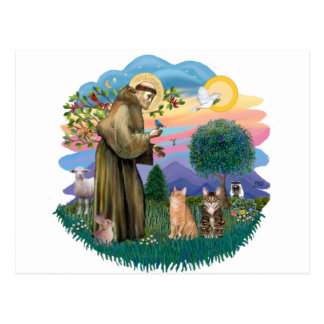 St Francis (ff) - Two Tabby cats Postcard