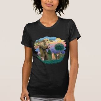 St Francis (ff) - Two Tabby cats T-Shirt