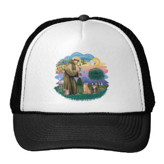 St Francis (ff) - Two Tabby cats Trucker Hat