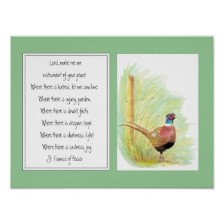 St. Francis of Assisi, Prayer Ring Necked Pheasant Poster