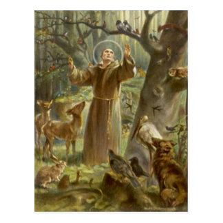 St. Francis of Assisi Preaching to the Animals Postcard