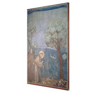 St Francis que predica a los pájaros, 1297-99 Lona Estirada Galerias
