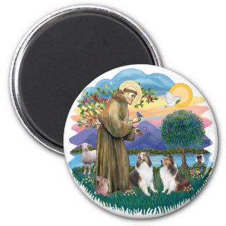 St Francis (W) - 2 Shelties (D&L) 2 Inch Round Magnet