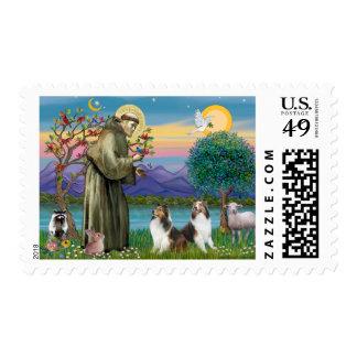 St Francis (w) - Dos Shelties (D&L) Sello