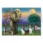 St Francis (W) - Two Shelties (D&L) Greeting Card