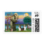 St Francis (W) - Two Shelties (D&L) Stamp