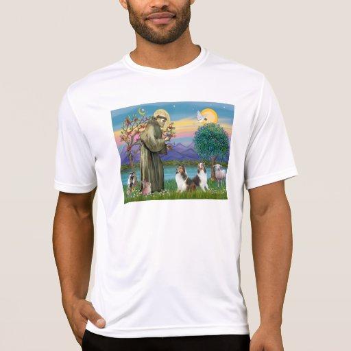 St Francis (W) - Two Shelties (D&L) T-shirts
