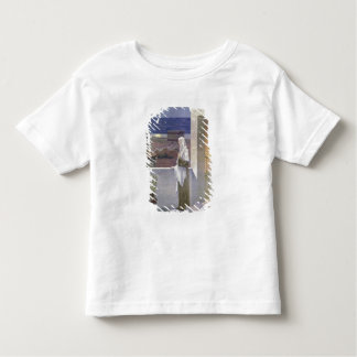 St. Genevieve Watches Over the Sleeping City T Shirt