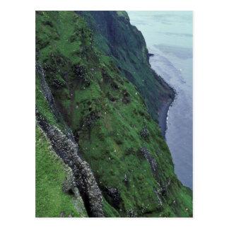 St. George Island, Pribilofs, High Bluffs Postcard