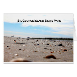 ST. GEORGE ISLAND STATE PARK - FLORIDA CARD