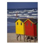 St. James Bay Bathing Boxes, near Capetown, 3 Postcard