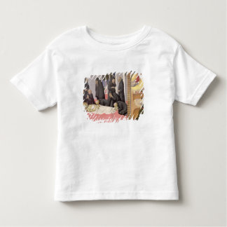 St. Jerome appearing to St. Cyril of Jerusalem, 14 Toddler T-shirt