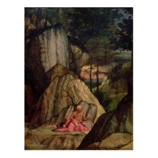 St. Jerome Meditating in the Desert, 1506 Postcard