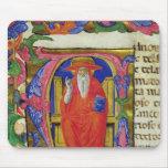 St Jerome Tapete De Raton