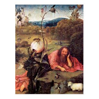 St John el Bautista en el desierto (meditación) Tarjetas Postales