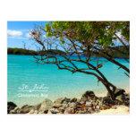 St. John USVI Cinnamon Bay Beach Postcard