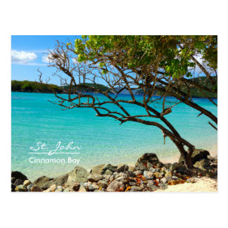 St. John USVI Cinnamon Bay Beach Postcard