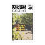 St. John USVI Postage Stamps