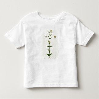St. John's Wort, plate 15 from 'A Curious Herbal', T Shirt