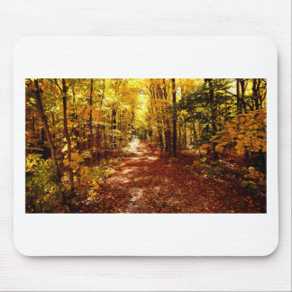 St Joseph Island Fall Colours Mouse Pad