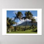St. Kitts  Plantation Poster