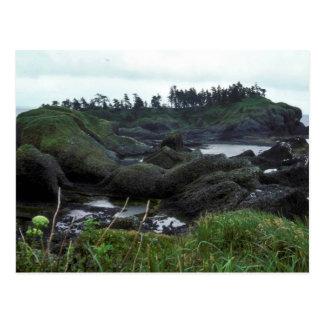 St. Lazaria Island, looking east Postcard