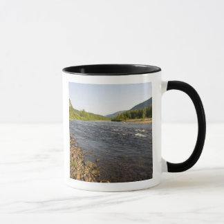 St. Marguerite river in Parc du Saguenay. Mug
