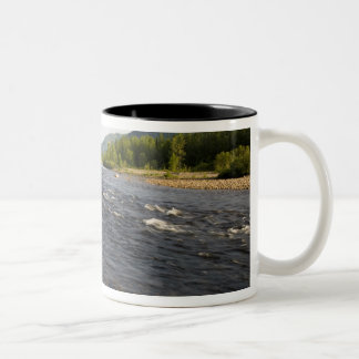 St. Marguerite river in Parc du Saguenay. Two-Tone Coffee Mug