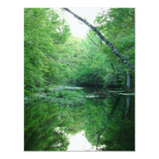St. Marks River Card